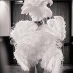 weiße Federn, white feather, feather fan, Federfächer Tanz